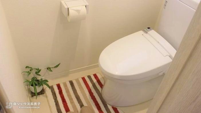 ナナイロ脱毛部の雰囲気:清潔さが保たれているトイレ
